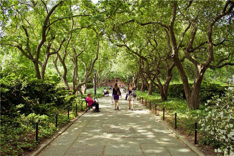 Аллея в Центральном Парке. США глазами туриста, туризм, факты