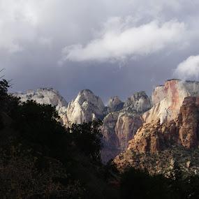 Zion National Park by VAM Photography - Landscapes Mountains & Hills ( nature, travel, places, landscape, zion,  )