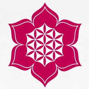 lotus-flower-vector-c-energy-symbol.jpg