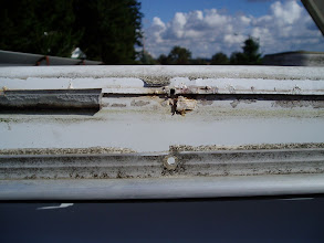 Photo: The metal trim held on by hundreds of screws was carefuly removed.