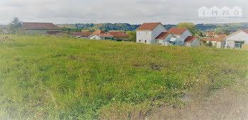 terrain à Bizonnes (38)