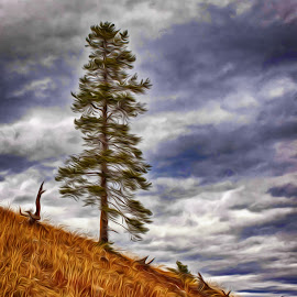 Windy Day by Richard Michael Lingo - Digital Art Things ( grass, things, tree, digital art, wind )