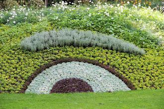Photo: {1. Mimétisme ou imitation : l'avis des plantes} Les génies du jardin, Monsieur