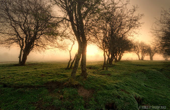 Photo: Edge Of The World  Caress me this morning And whisper your secrets Surround only me To keep me warm In hues of gold and green And other colours of silence The sunrise through the ether Bathes my dreams Keeping me safe As I stand On the edge of the world  Good morning G+  This is one of my favourite locations, a simple piece of land on a farm with a public footpath that goes through it, simple place that can at times produce some wonderful sunrises. I used to spend so much time here waiting for the sun to come up, it time I went back now summer is almost upon us.  I hope you all have a wonderful day.  Mike     #thewhiterabbit #mikefshaw #mikeshaw #landscapes