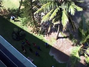 Photo: Tsunami 2004. Die erste Welle erreicht das Hotel. / The first wave arrives at our hotel. Video image: S. Hartmeyer.