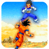Goku Warrior Fight