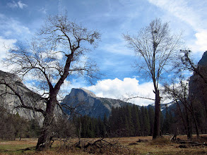 Photo: Half Dome from Cook's Meadow, Day 3, S95 #3799