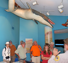 Photo: GSM members listen to our guide in the Visitor Center, while nonchalantly ignoring prehistoric beasts swimming overhead.