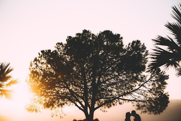Φωτογράφος γάμου Kirill Samarits(KirillSamarits). Φωτογραφία: 06.11.2017