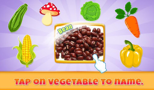 Real Vegetables For Kids v1.0.0