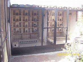 Photo: 2 de mis palomares de cría.