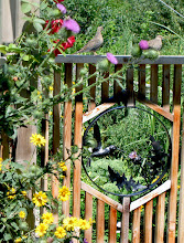 Photo: We leave Bull Thistles in our garden because the goldfinches LOVE them. Bringing birds to the garden controls pests.