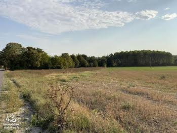 terrain à batir à Châlons-sur-Vesle (51)