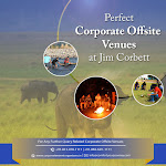 Best Conference Venues In Jim Corbett | Corporate Offsite