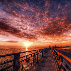 Dunedin Causeway Bridge. by Edward Allen - Landscapes Sunsets & Sunrises (  )