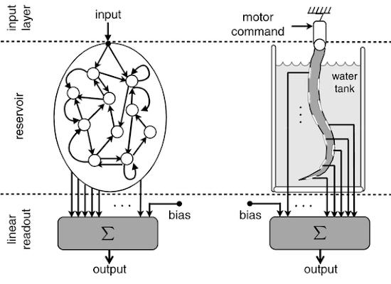 Actualidad Informática. Robot flexible tipo tentáculo como computador analógico. Rafael Barzanallana