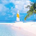 tropical paradise wallpaper icon