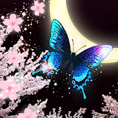Moon*Cherry*Butterfly LWP