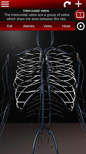 Circulatory System in 3D (Anatomy) 1.58 screenshots 6
