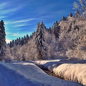 zima999-.jpg