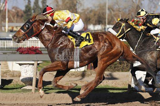 Don Quillagua (Don Cavallo) se lleva  Condicional (1000m-Arena-CHS).