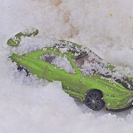 by Howard Mattix - Artistic Objects Toys ( toys, snow, mustang, still life )