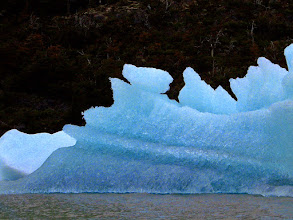 Photo: An iceburg born from Glacier Grey