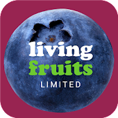 Living Fruits Blueberries