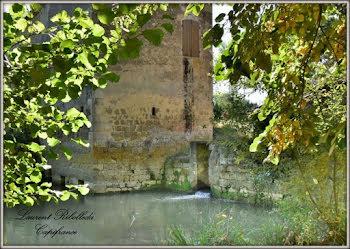 moulin à Nérac (47)