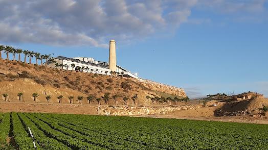 SAT Los Guiraos cuenta con un amplio perímetro de riego.