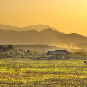 spring sunset by Arubam Meitei - Landscapes Prairies, Meadows & Fields ( northern, manipur, sunset, india, spring, sun )