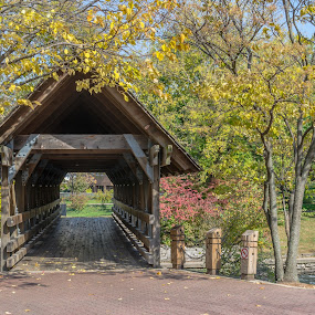 Covered Bridge by Lynn Kirchhoff - Buildings & Architecture Bridges & Suspended Structures ( naperville, autumn, covered bridge, riverwalk, bridge,  )