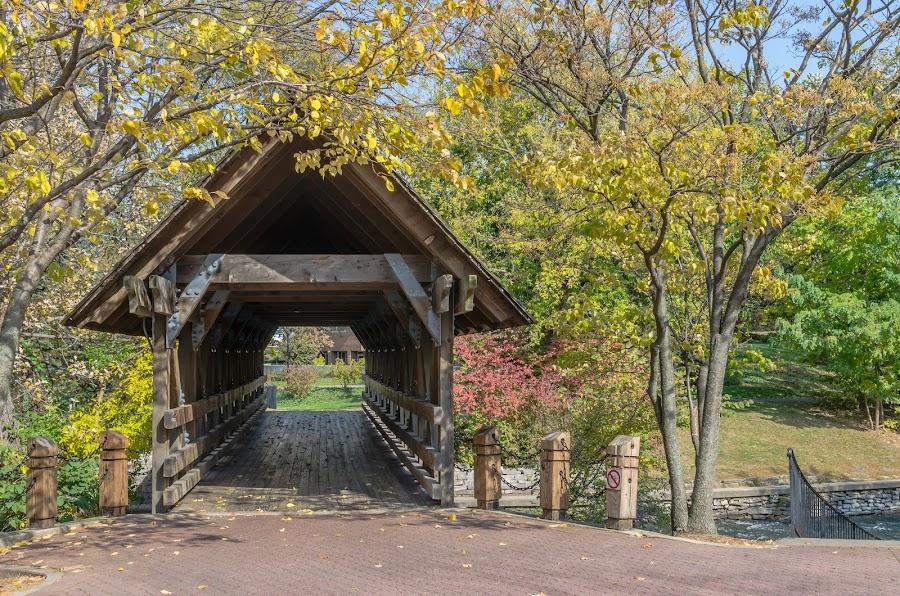 Covered Bridge by Lynn Kirchhoff - Buildings & Architecture Bridges & Suspended Structures ( naperville, autumn, covered bridge, riverwalk, bridge,  )
