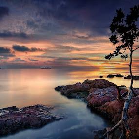 by Arief Wardhana - Landscapes Sunsets & Sunrises