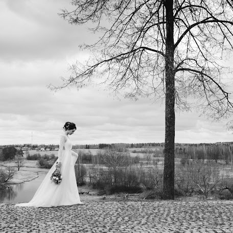 Wedding photographer Marina Schegoleva (Schegoleva). Photo of 12.01.2018
