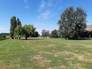 terrain à Labergement-lès-Seurre (21)