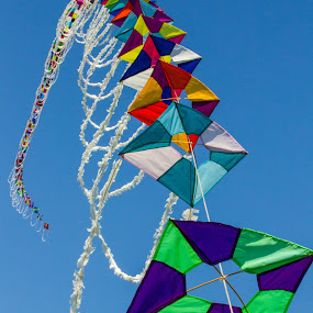 Kites Ad infinitum by Jason Rose - Artistic Objects Toys ( colors, kite string, kites )
