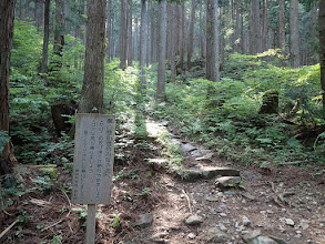 ここから登山道
