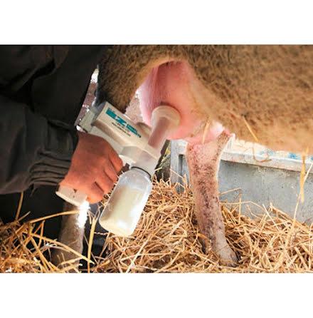 Mjölkpump för får - Udderly Ez - Startpaket