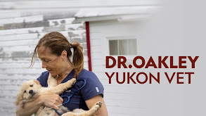 Dr. Oakley, Yukon Vet thumbnail