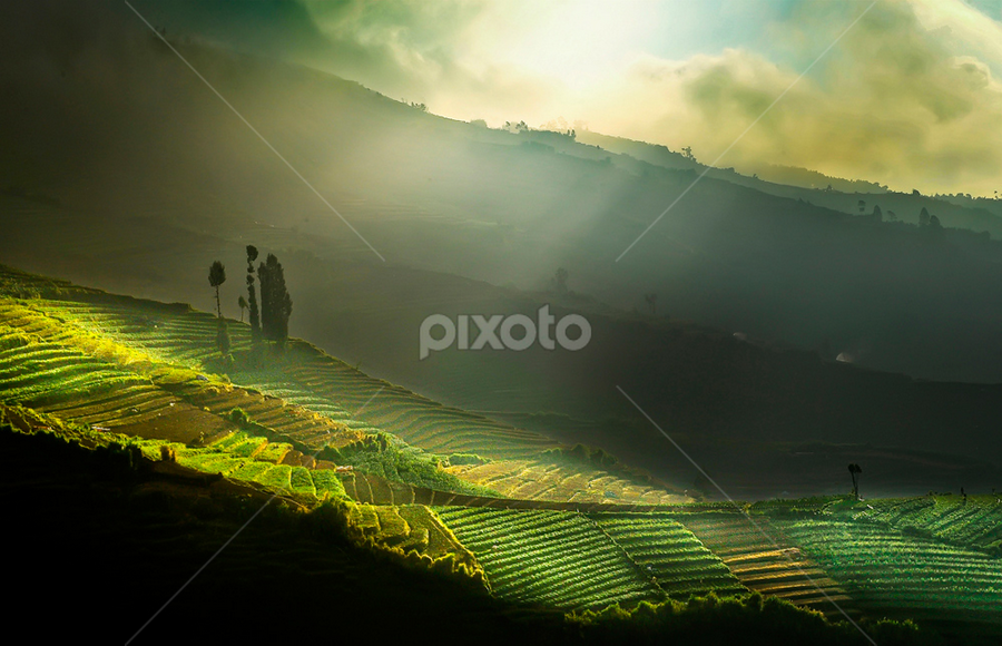 Morning Light by Pimpin Nagawan - Landscapes Mountains & Hills ( landscape )