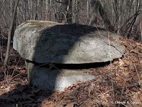 Photo: Split rock, stone turtle