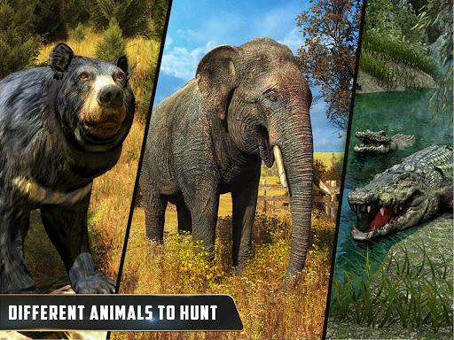 Animal Hunter : Jungle Sniper Shooting apktram screenshots 11