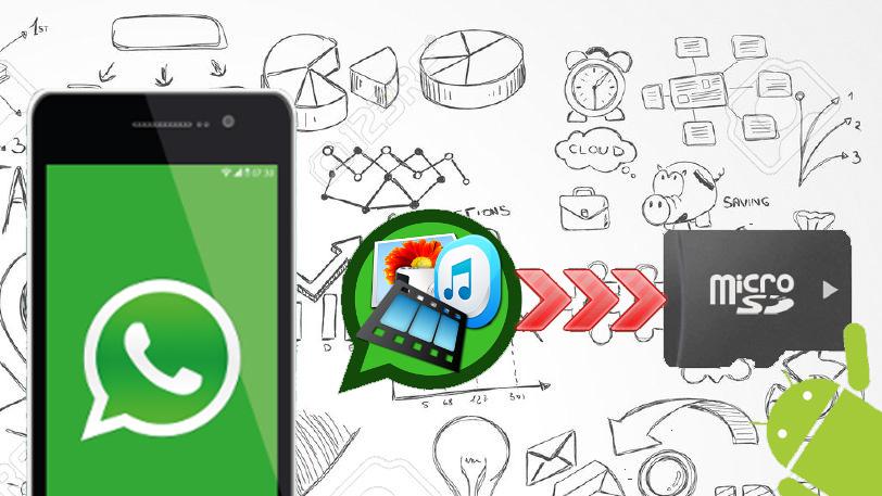 Salvare foto WhatsApp su Scheda SD automaticamente