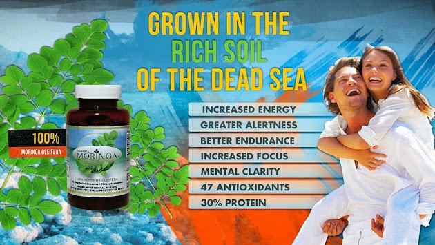 Image result for dead sea moringa