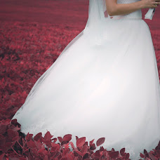 Wedding photographer Anna Onischuk (Skysay). Photo of 24.10.2015
