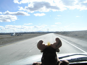 Photo: Wind farms in Idaho