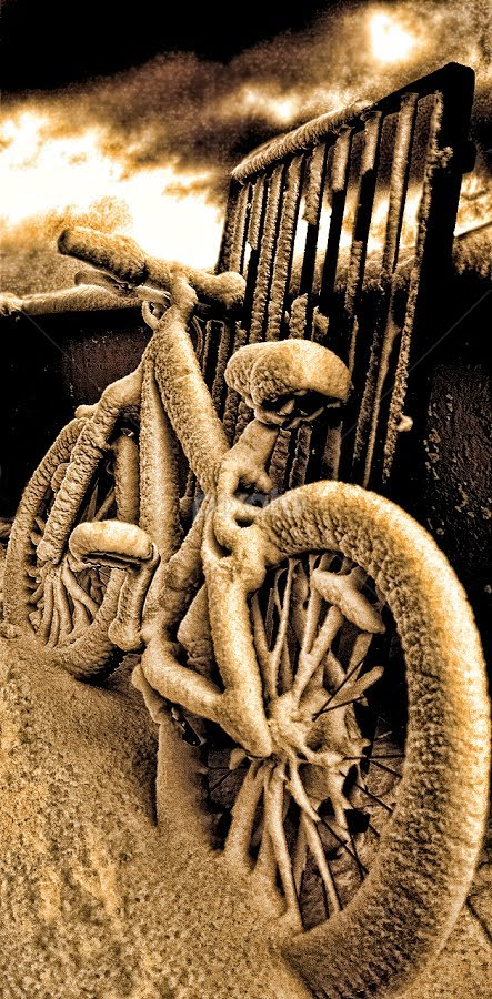 by Frodi Brinks - Transportation Bicycles