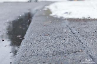 Photo: ...Unless It is Snow!