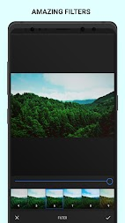 Analog Forest - Palette Forest - Film Filters APK screenshot thumbnail 6
